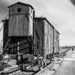 Birkenau Train